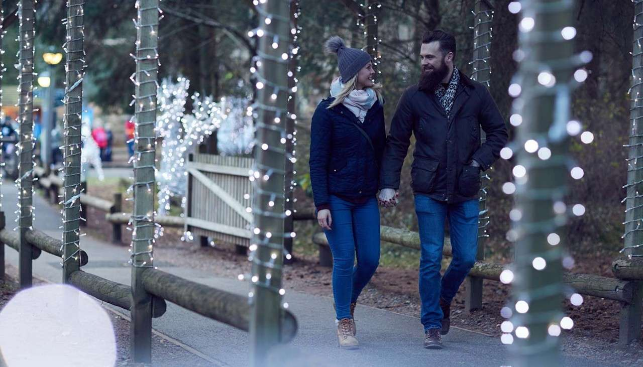 Festive carriage ride