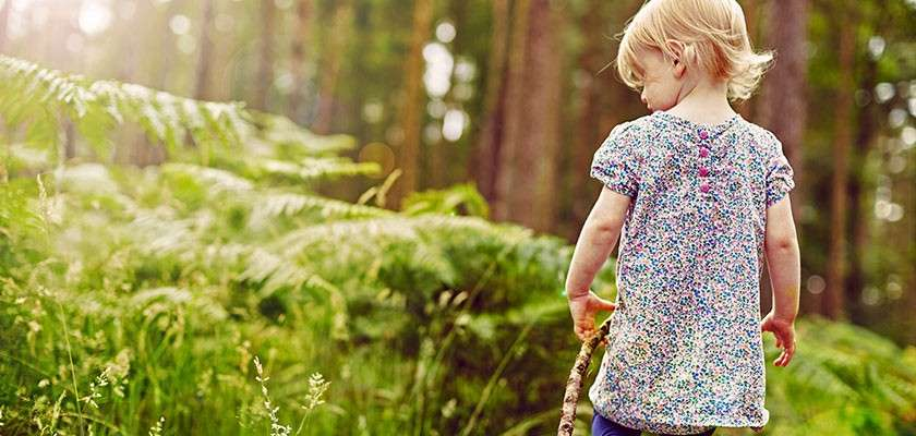 Toddler in forest