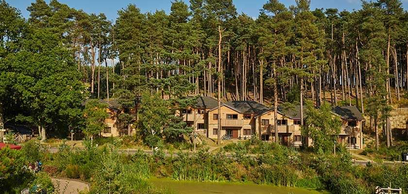 Lodges in the forest