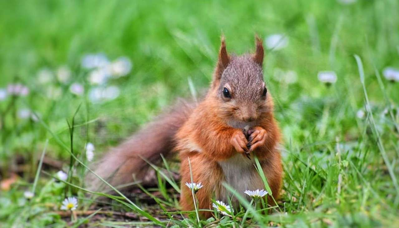 Interior of the Subtropical Swimming Paradise