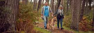 Dog friendly lodges & forest accommodation