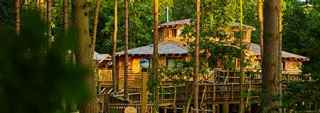 Luxury Treehouse holidays and breaks