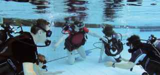 scuba diving try diving