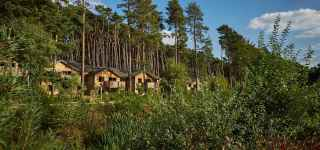 Woburn Forest accommodation