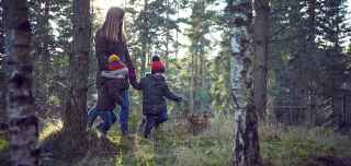 Children in forest